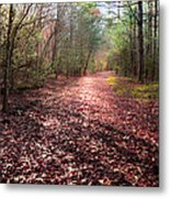 Inhale The Forest Metal Print