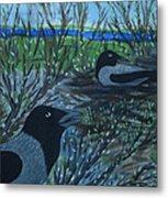Inis Meain 5 Hooded Crows Metal Print