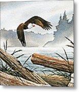 Inland Sea Eagle Metal Print