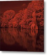 Inner City Lake Metal Print