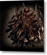 Inner Pine Cone Metal Print