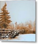 Inside The Corral Metal Print