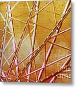 Inside The Ferris Wheel Metal Print
