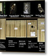 Instructions Cedar Nest Box For Kestrel And Owl Metal Print