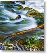 Intimate With River Metal Print