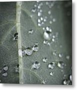 Into Every Life A Little Rain Must Fall Metal Print