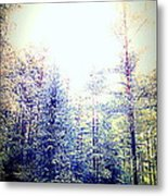 We Drifted Into Silence And Never Came Back  Metal Print
