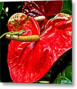 Into The Heart Metal Print