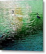 Into The Light Metal Print by Brian D Meredith