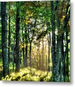 Into The Light II - Blue Ridge Parkway Metal Print