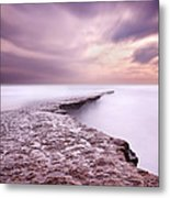 Into The Ocean Metal Print by Jorge Maia