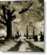 Invisible Light Metal Print