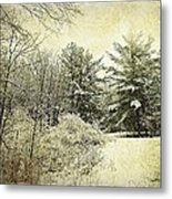 Invitation To Winter  Metal Print by Dianne  Lacourciere