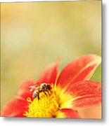 Inviting Metal Print by Beve Brown-Clark Photography