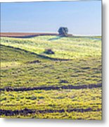 Iowa Farm Land #1 Metal Print