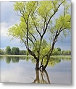 Iowa Flood Plains Metal Print