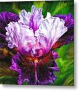Iridescent Iris Metal Print