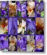 Iris Collage Metal Print