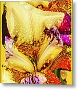Iris - Customized Metal Print