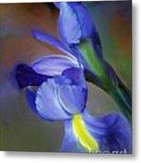 Iris Dream Metal Print