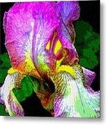 Iris Flashy Splash Of Color Metal Print