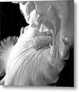 Iris Flower In Black And White Metal Print