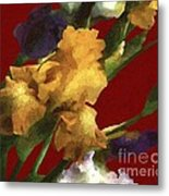 Iris In The Rough Metal Print
