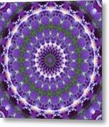 Iris Kaleidoscope  Metal Print