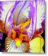 Iris Up Close And Personal Macro Metal Print