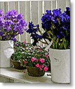 Irises And Impatiens Metal Print