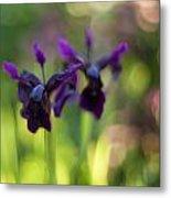 Irises Depth Metal Print