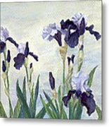 Irises Purple Flowers Painting Floral K. Joann Russell                                           Metal Print