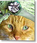Irish Cat Metal Print