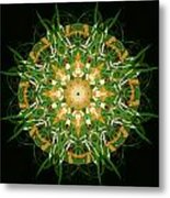 Irish Influence 3 Metal Print