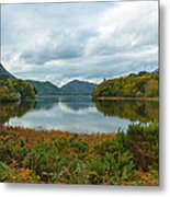 Irish Lake Metal Print by Pro Shutterblade