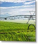 Irrigation On Saskatchewan Farm Metal Print by Elena Elisseeva