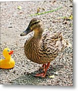 Is Everything Ducky? Metal Print