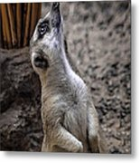 Is It You God Metal Print