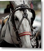 Is The Day Over Yet Metal Print
