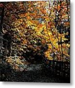Is This The Way Out Metal Print