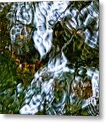 Isinglass Metal Print