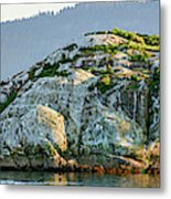 Island In A Lake, Glacier Bay National Metal Print