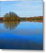 Island In The Pond Metal Print