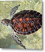 Island Turtle Metal Print