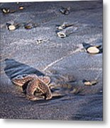 It Matters To This One Isle Of Palms Sc Metal Print