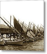 Italian Fishing Boats Fishermen's Wharf San Francisco Circa 1903 Metal Print