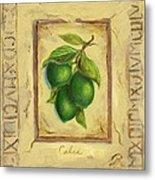 Italian Fruit Limes Metal Print