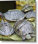It's A Bit Crowded Here Can We Have Next Meeting At The Conference Room Metal Print