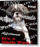 It's A Shih Tzu Metal Print by William Schmid