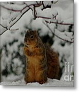It's Cold Outside Metal Print